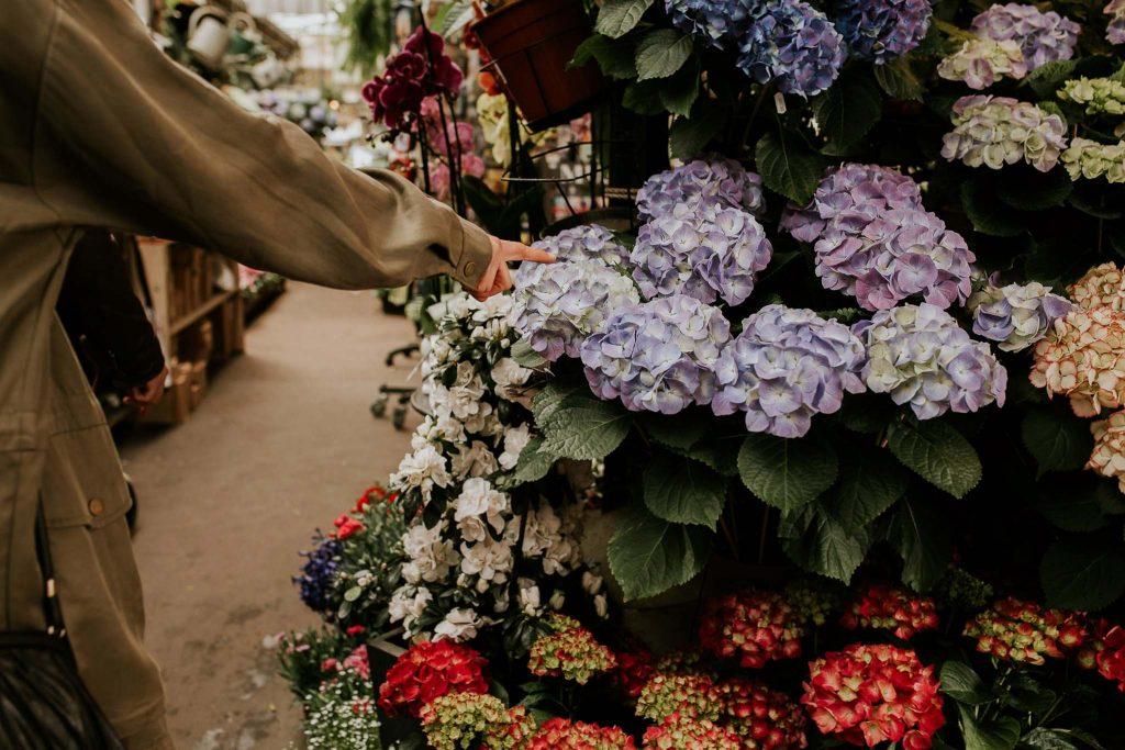 Fotografo boda españa